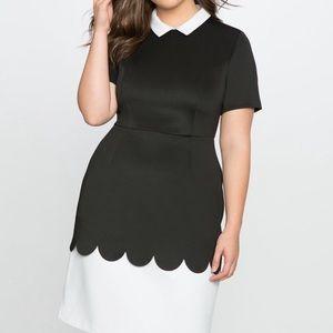 Eloquii Laser Cut Scalloped Contrast Dress 22 22w